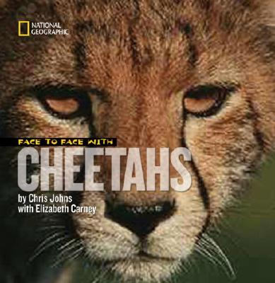 Face to Face With Cheetahs By Johns, Chris/ Carney, Elizabeth